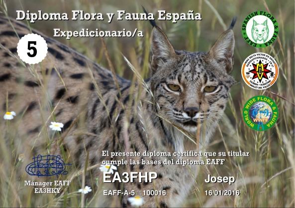 EA3FHP_EAFF-A-5