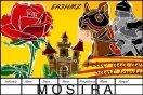 Sant Jordi 2017 (3)